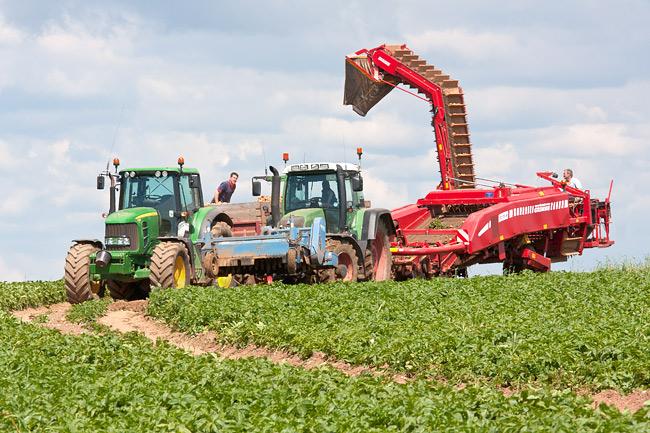 Potato Lifting - Warning - Contains Tractors