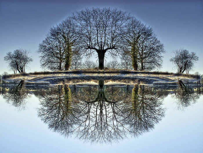2 reflections, one real one false...