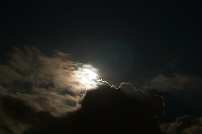 moonlit-night.jpg