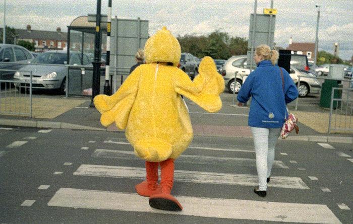 yellow-bird.jpg