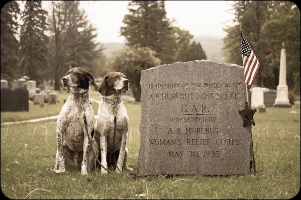 Our Memorial Day Tribute