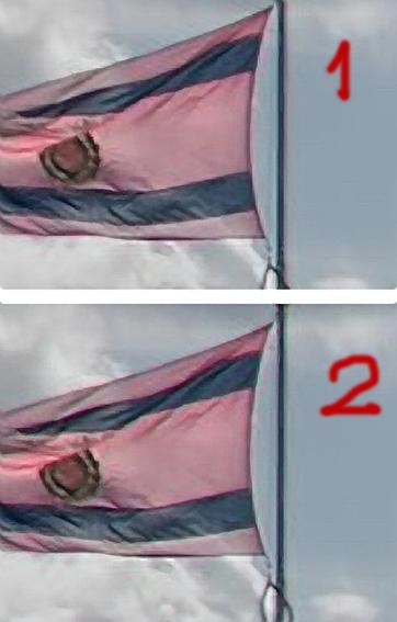 flag-12.jpg