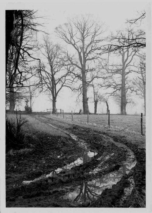 winter-farm.jpg