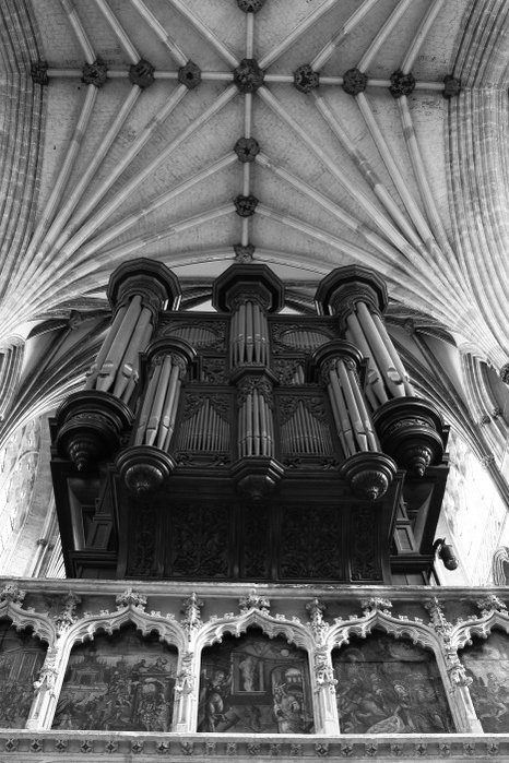 organ-nave-0001.jpg