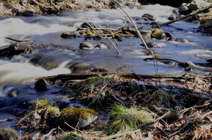 smoothwater.jpg