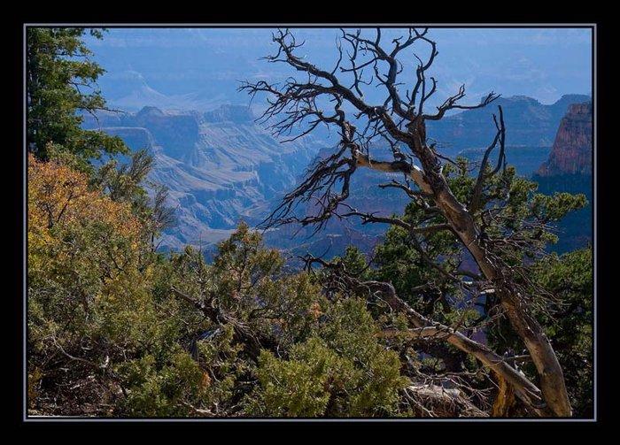 z-grand-canyon-002-web.jpg