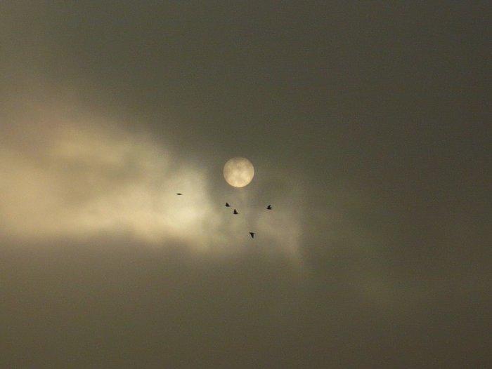 moon-003.jpg